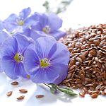 Dieta dr Budwig – podstawowe zasady olejowo-białkowej diety leczniczej w skrócie